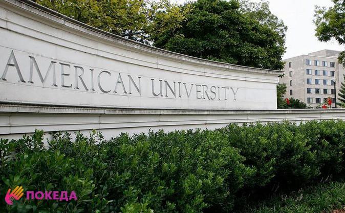 American University частный