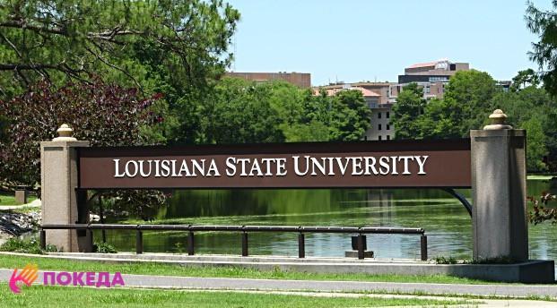 Университет в Луизиане