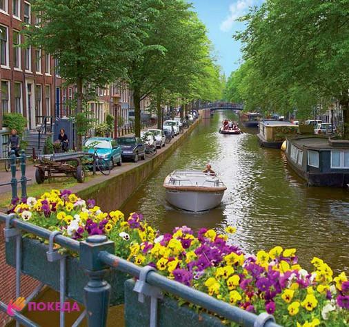 уехать жить в Нидерланды