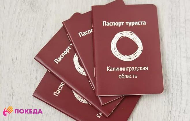 паспорт туриста Калининград