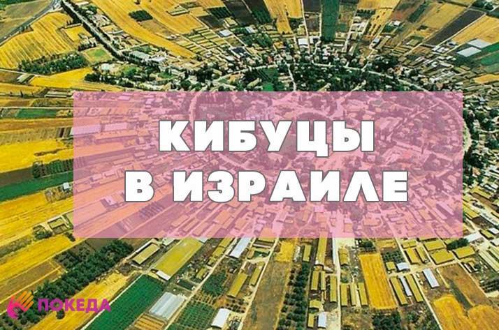 кибуцы и поселения в Израиле