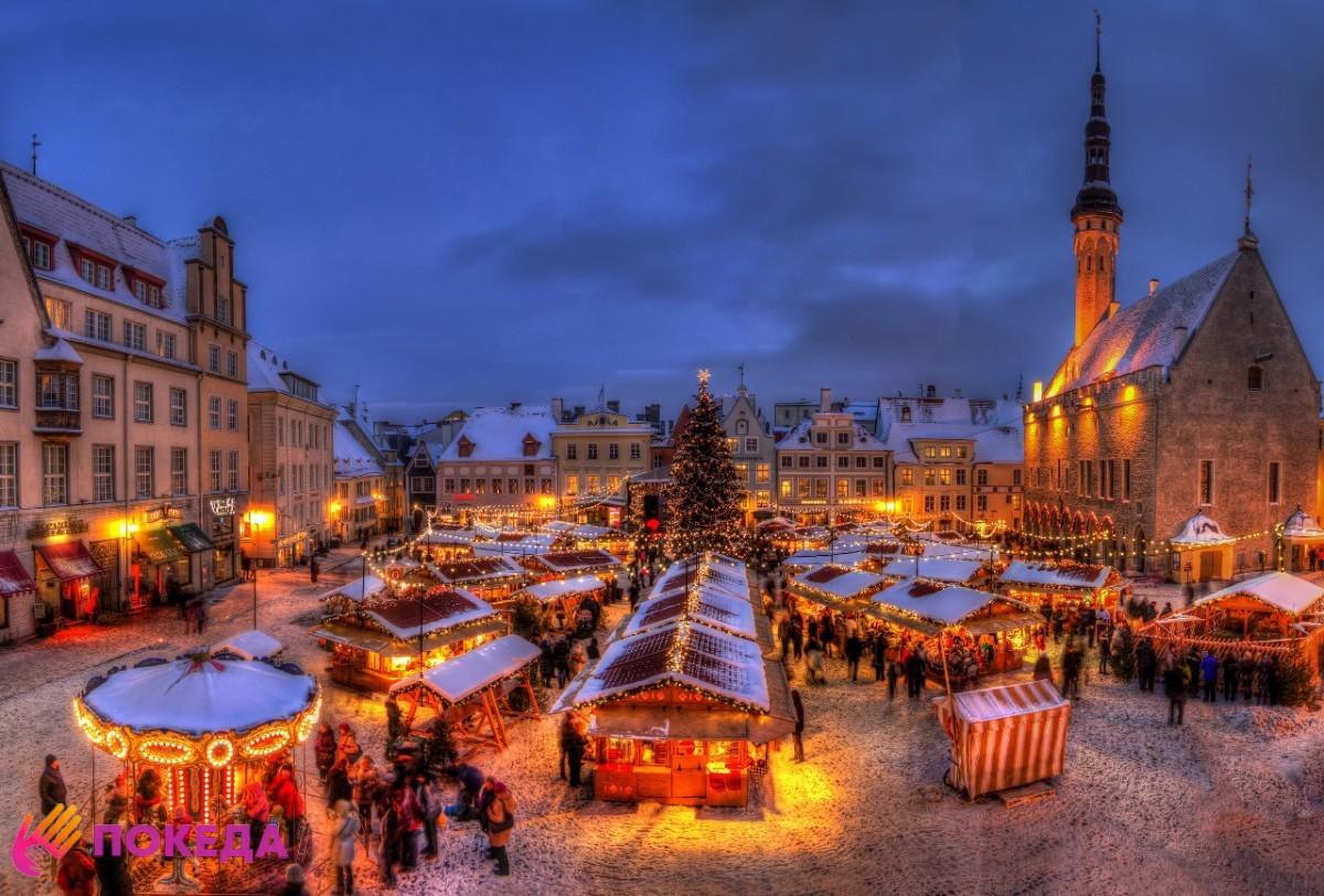 Калининград на зимние каникулы