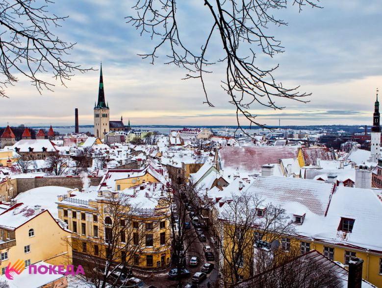 Поездка в Таллин на зимние каникулы