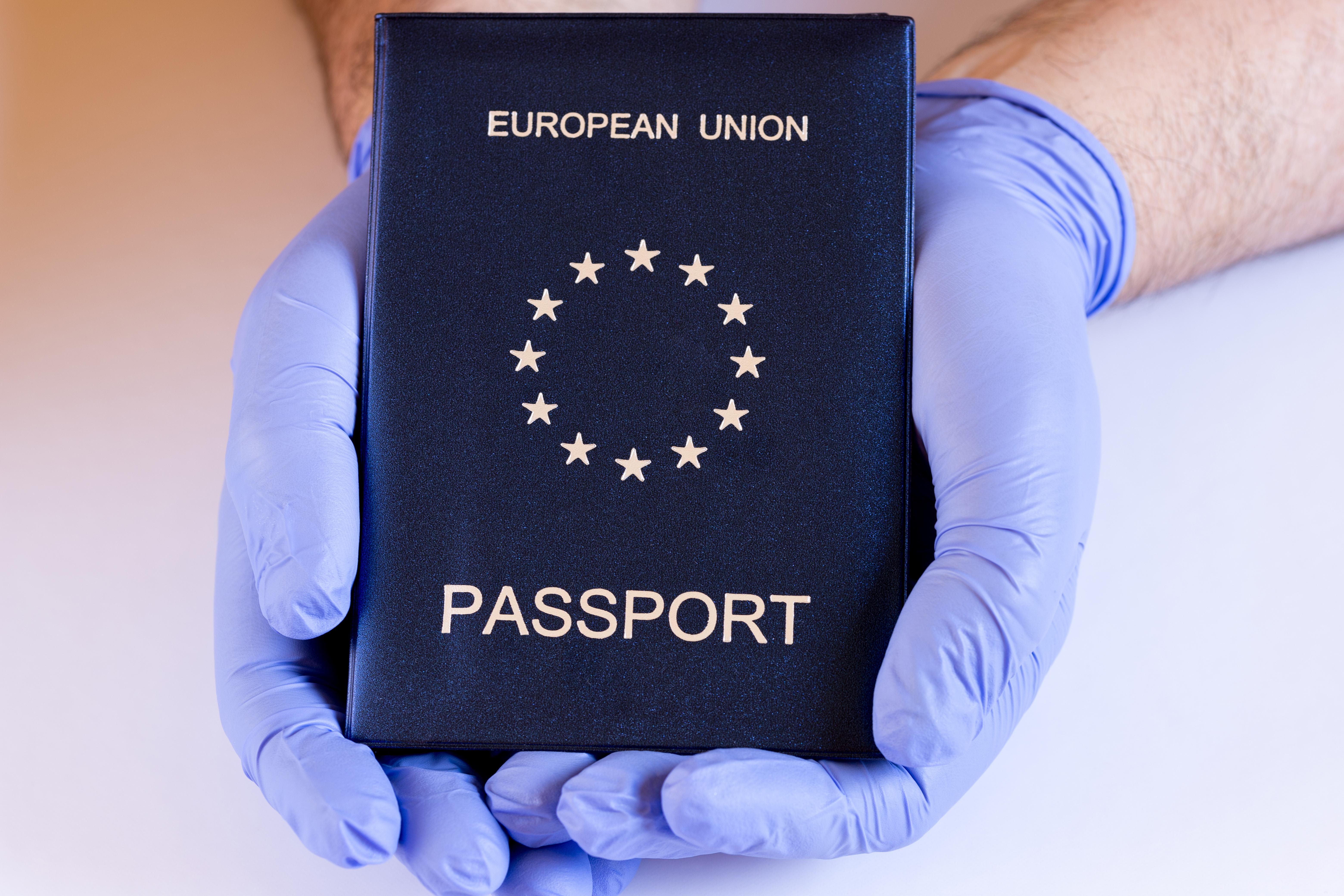 Паспорт ЕС, который иностранцы могут получить по натурализации