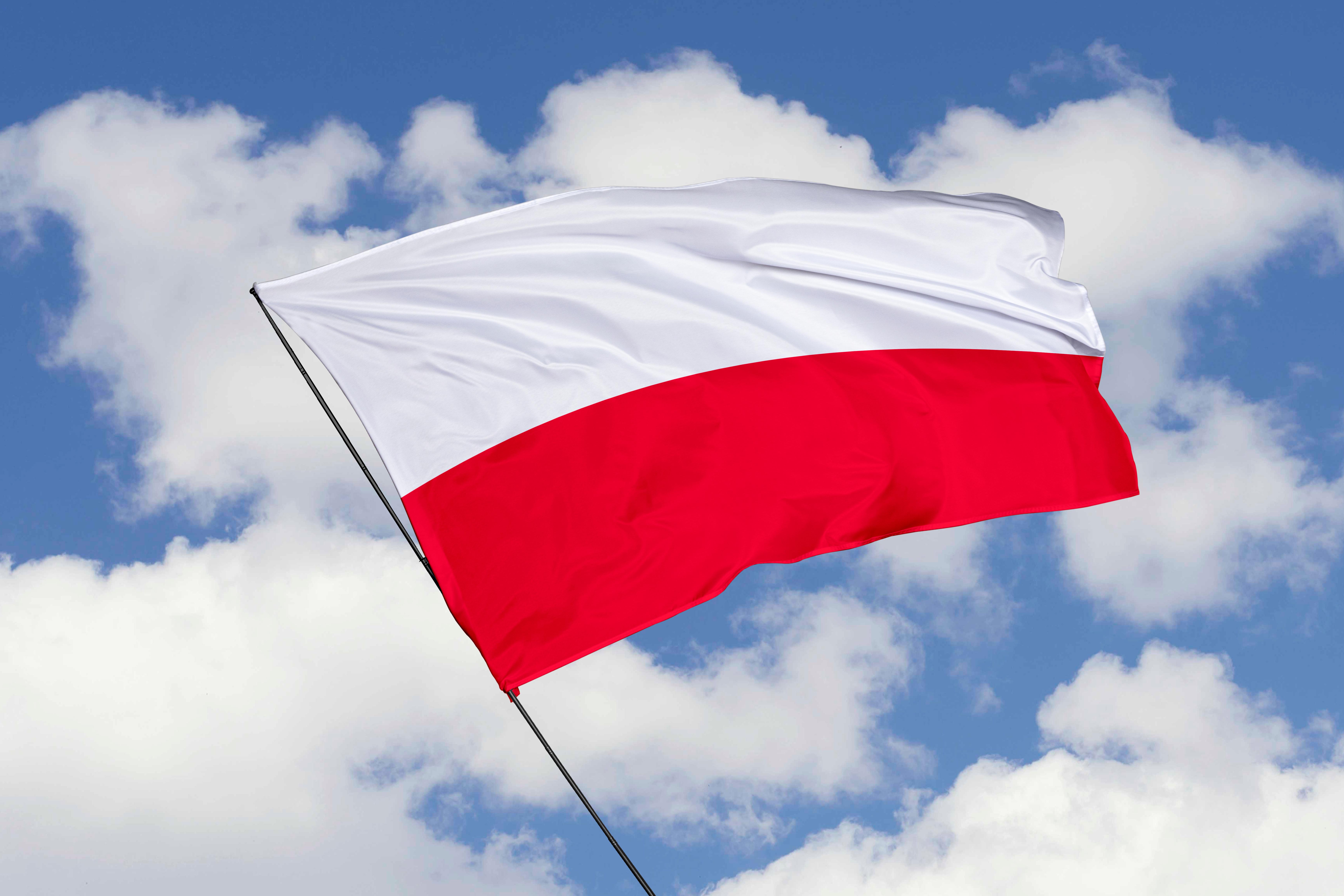 Флаг Польши, легализация в которой доступна для иностранцев