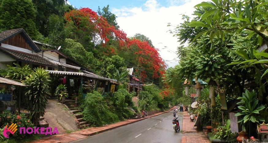 природа в Лаосе