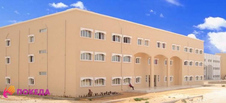 Университет в Сомали
