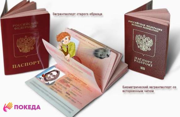 паспорт старый и биометрический